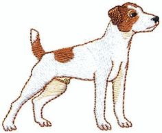 Jack russel dog and girl clipart.