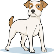 Clipart jack russell dog.