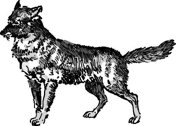 Jackal Clip Art at Clker.com.