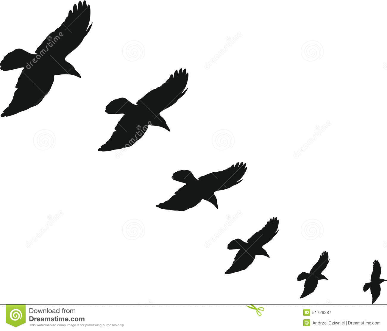 Jackdaw Stock Illustrations.