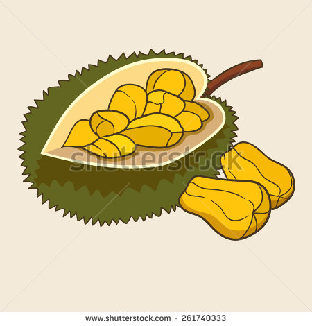 Jackfruit Stock Vectors, Images & Vector Art.