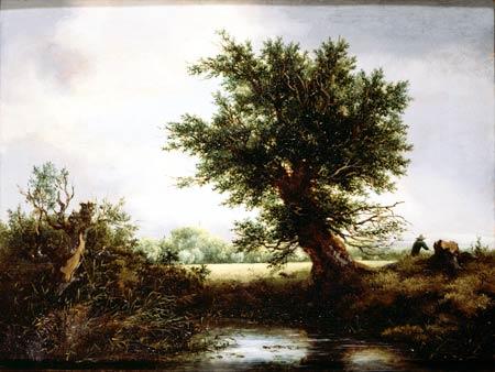 Jacob van Ruisdael (1628/1629.