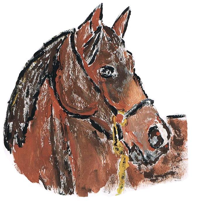 Free photo Drawing Jafrapony Pony Horse Painting.