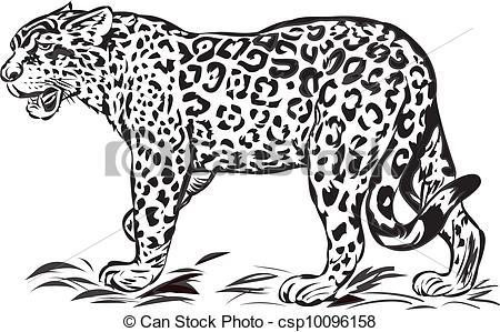 Jaguar Illustrations and Clipart. 2,616 Jaguar royalty free.