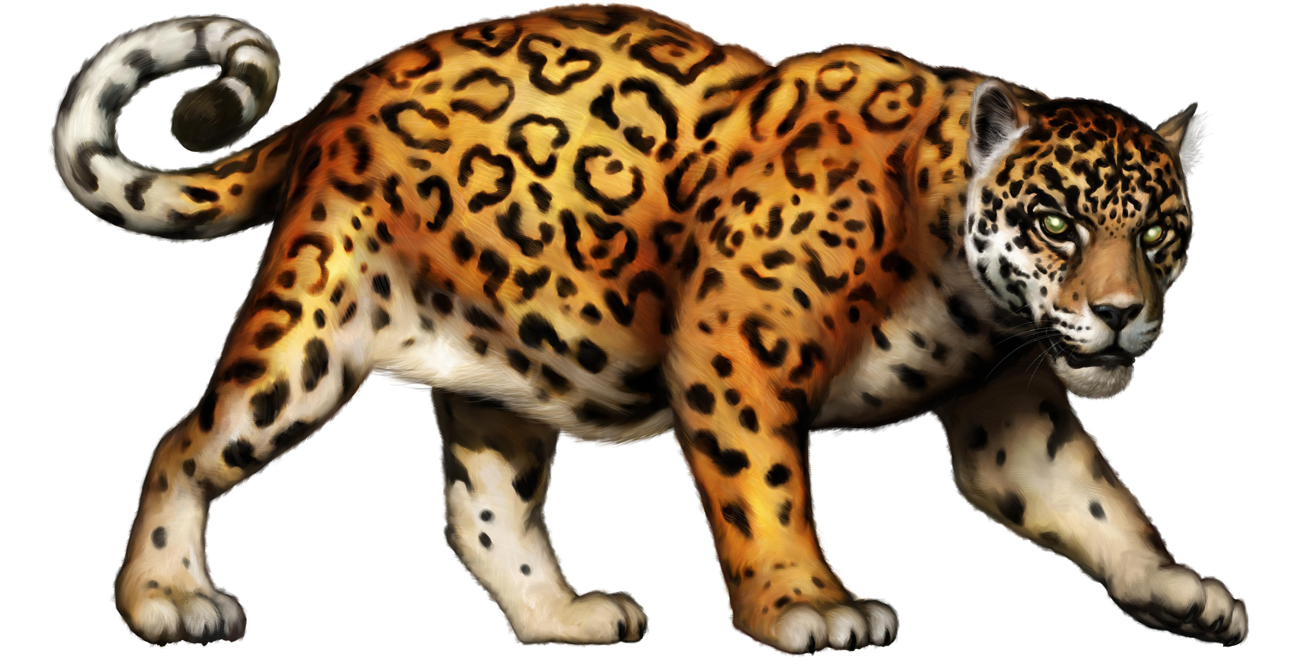 Jaguar Clipart.