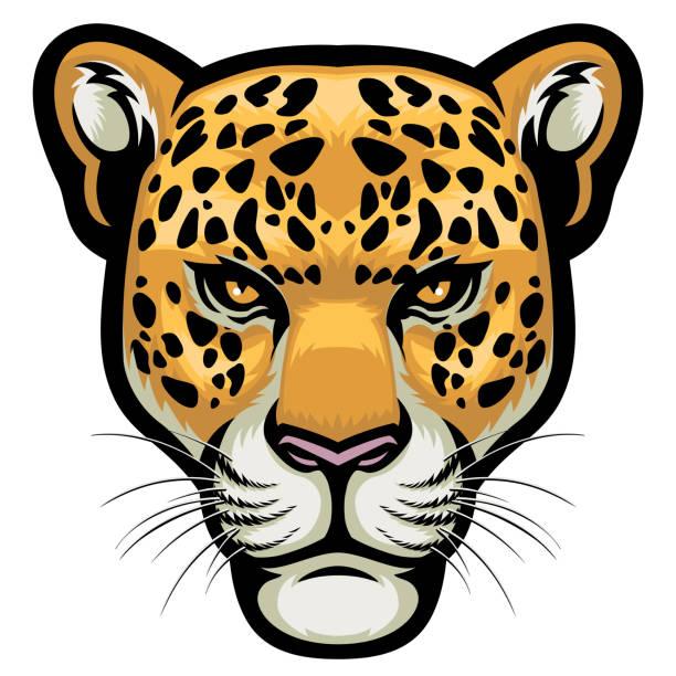 Best Jaguar Illustrations, Royalty.