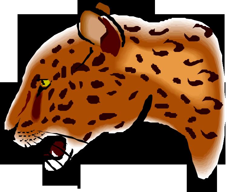 Jaguar cub clipart.