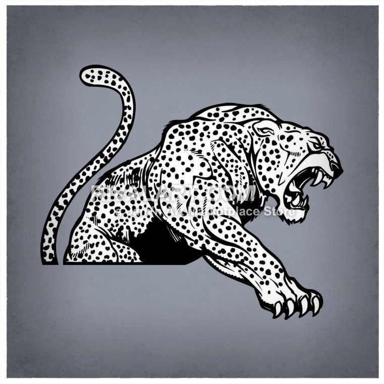 Jaguar With Spots Roaring.