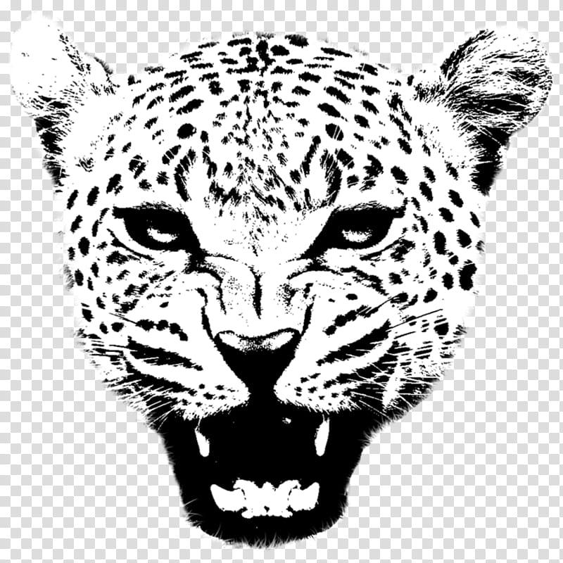 Balam [jaguar] transparent background PNG clipart.