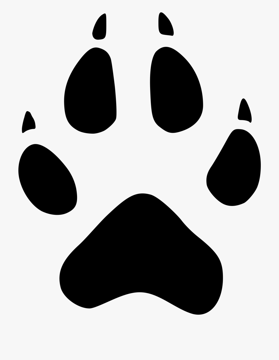 Graphic Transparent Library Jaguar Paw Clipart.