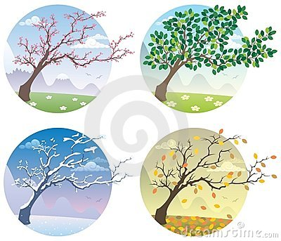 Seasons Stock Illustrations.