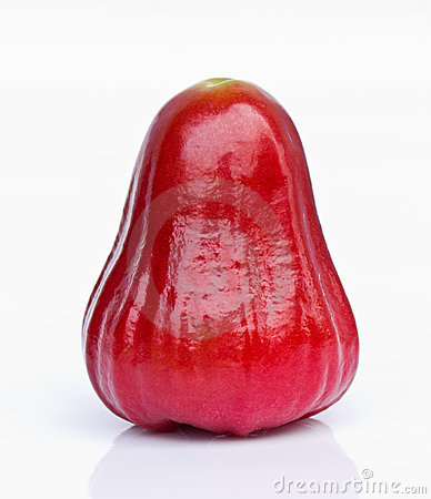 One Red Rose Apple Stock Photography.