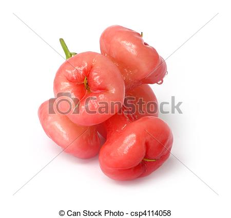 Jambu Stock Photos and Images. 232 Jambu pictures and royalty free.