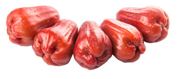 Rose Apple Fruit, Jambu Stock Photos.