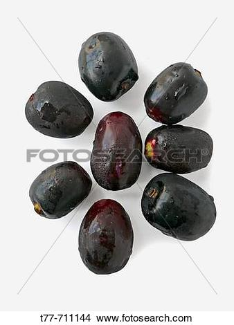 Jamun tree Stock Photos and Images. 3 jamun tree pictures and.