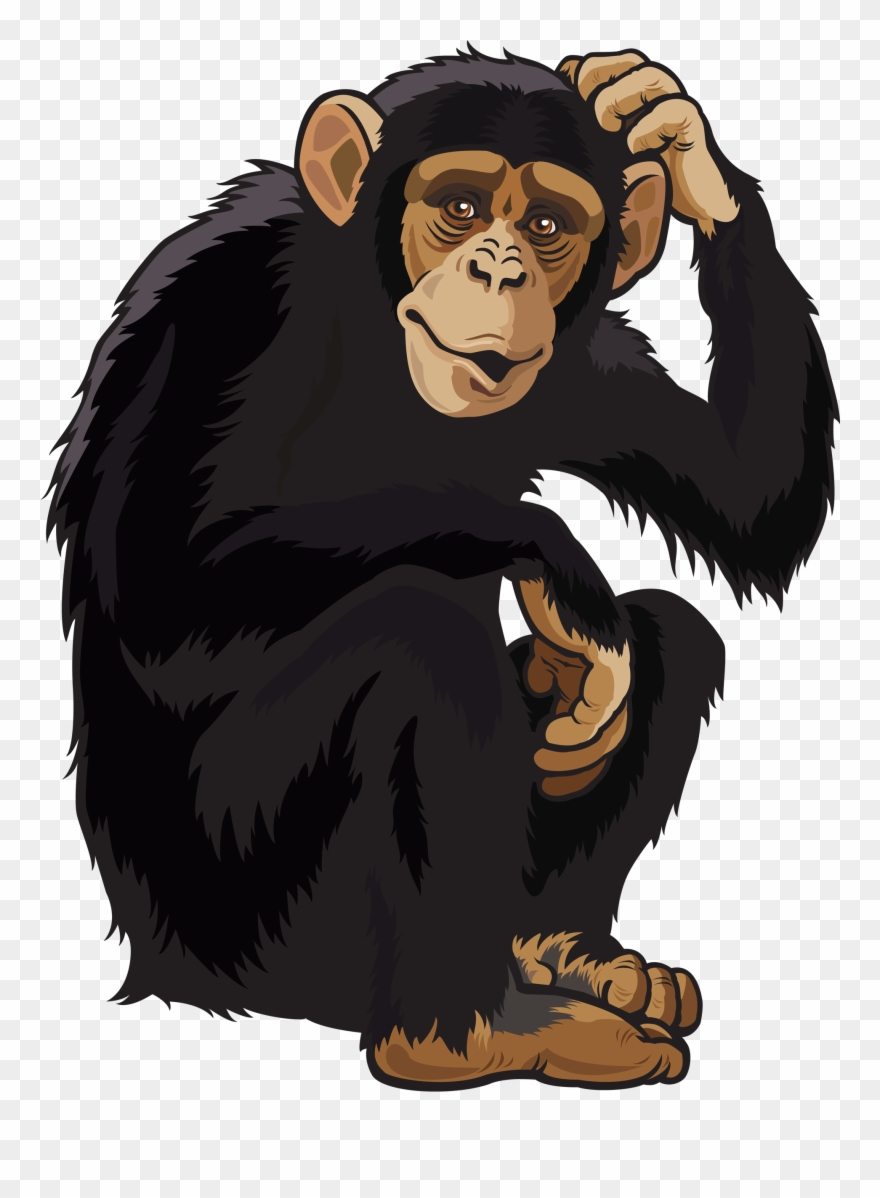 Transparent Monkey Clip Art.