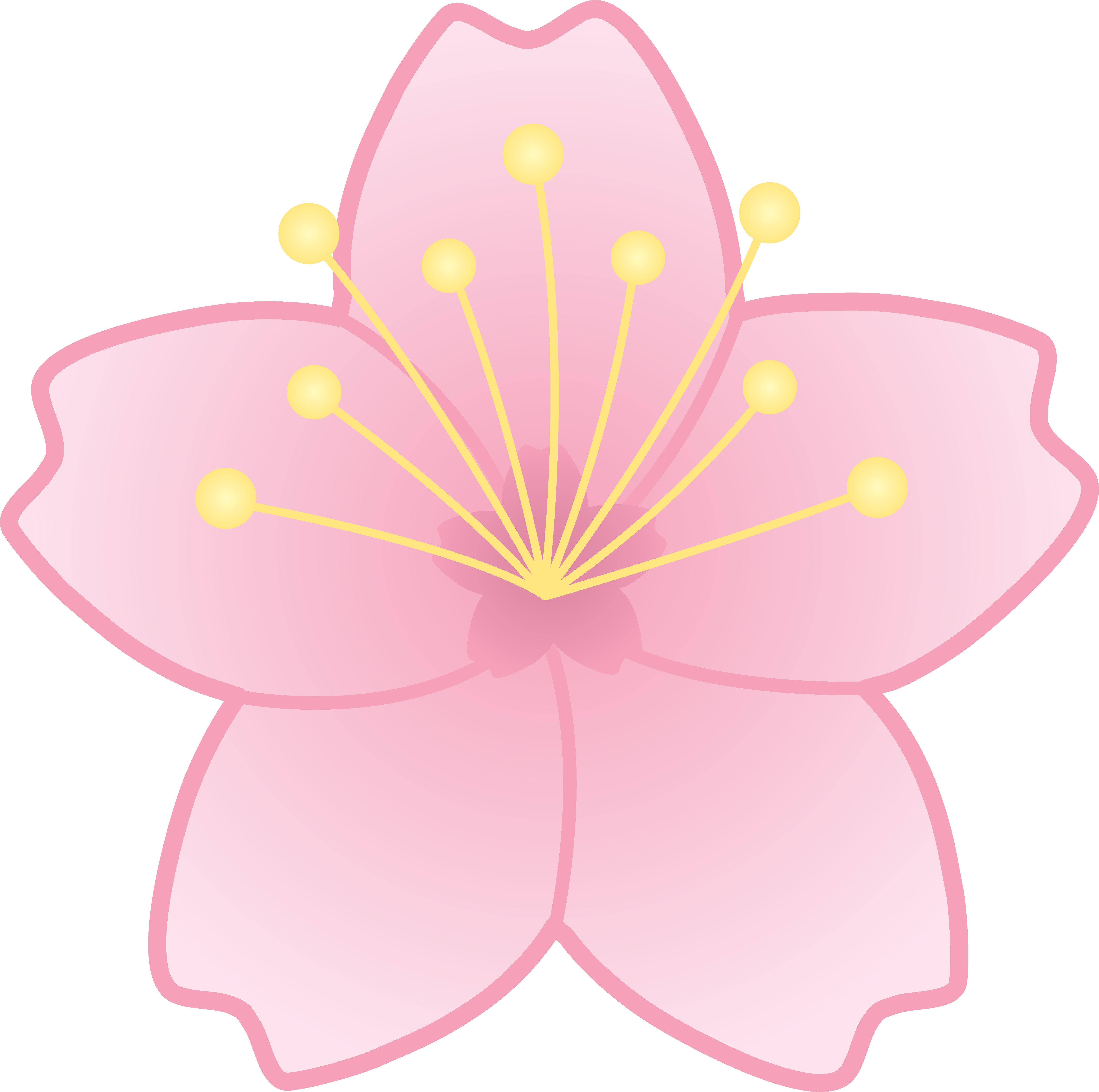 Cherry Blossom Cartoon.