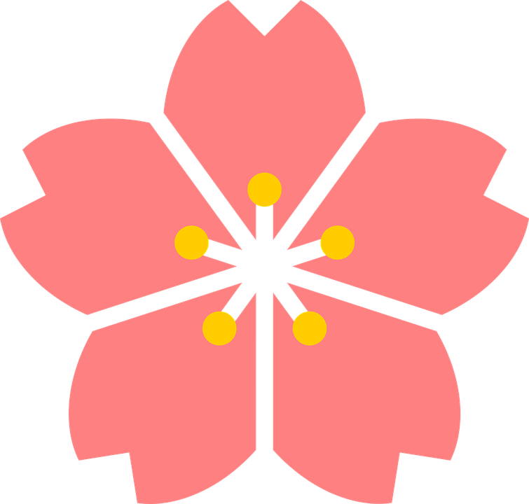 Free vector graphic: Cherry Blossom, Flower, Japan.