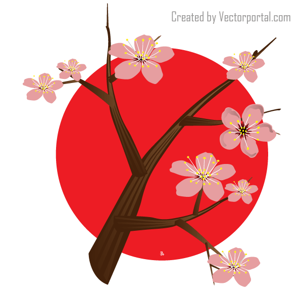 Vector Japanese Cherry Blossom.