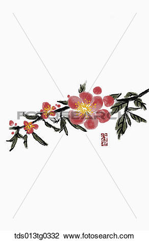 Clip Art of Japanese Apricot Tree in ink painting tds013tg0332.