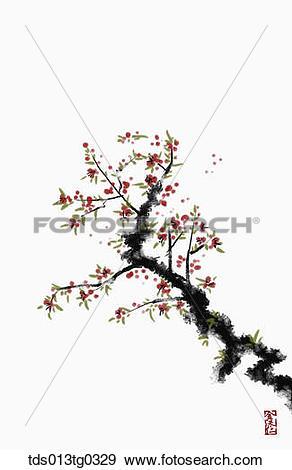 Japanese apricot tree Stock Illustrations. 54 japanese apricot.