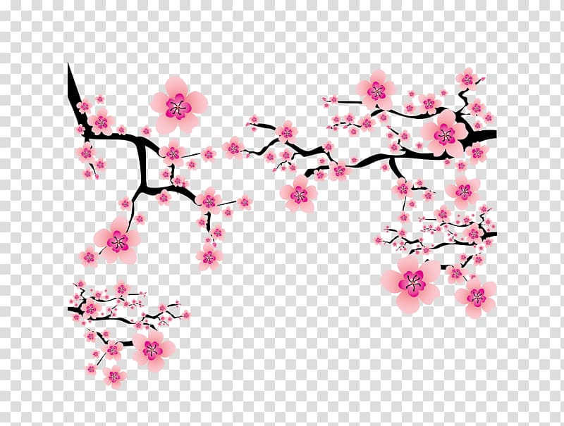 Cherry blossom Plum blossom , pink Japanese elements cherry blossom.