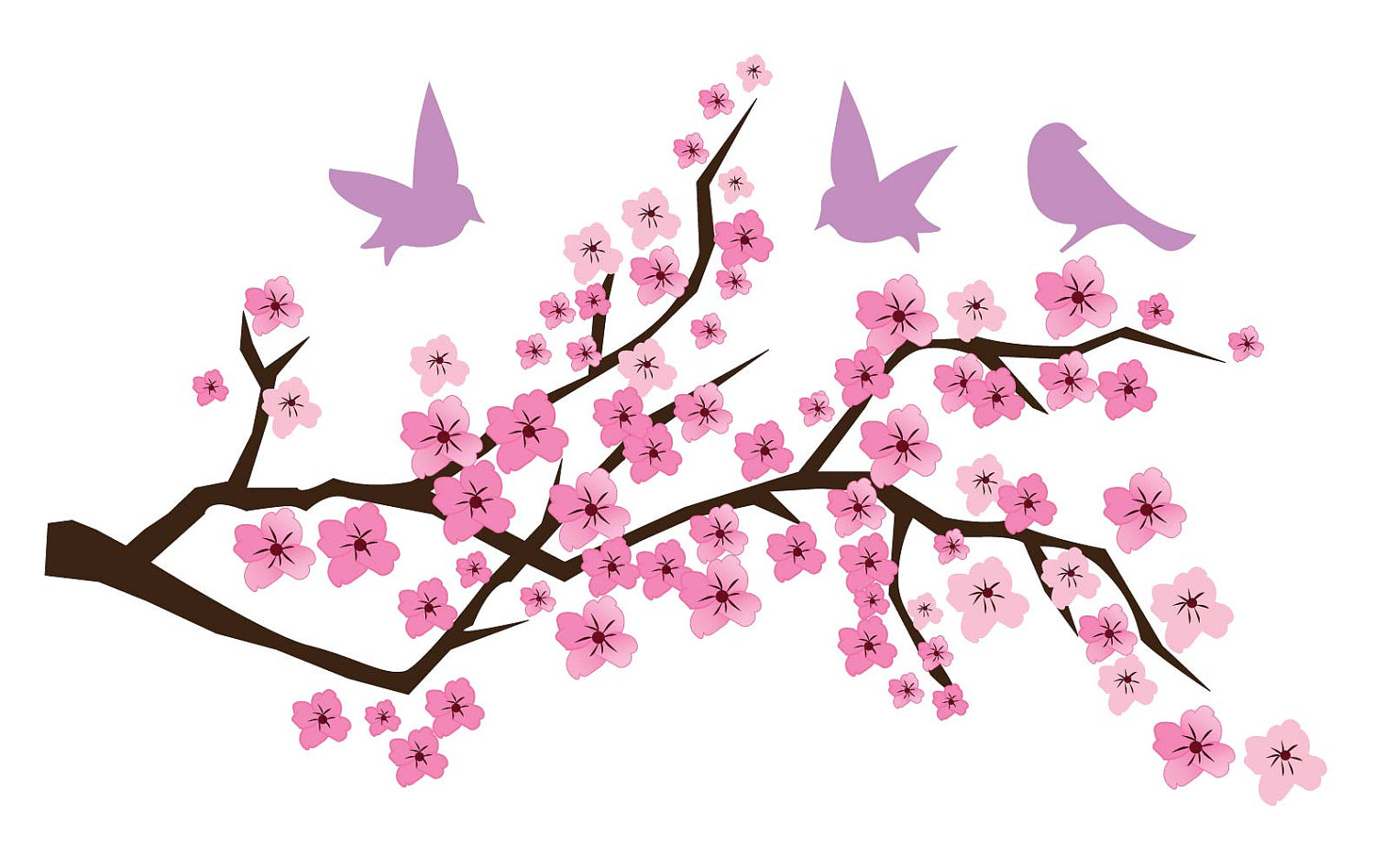 Japanese cherry blossom clipart - Clipground