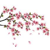 Cherry Blossom Clip Art Free.