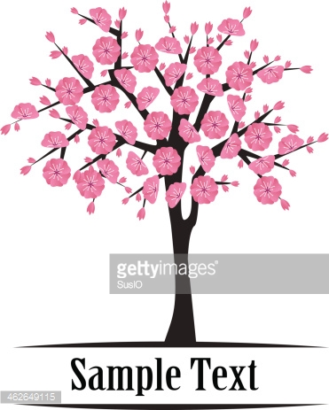 Japanese Cherry Tree Blooming stock vectors.
