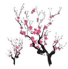 japanese cherry blossom drawing.
