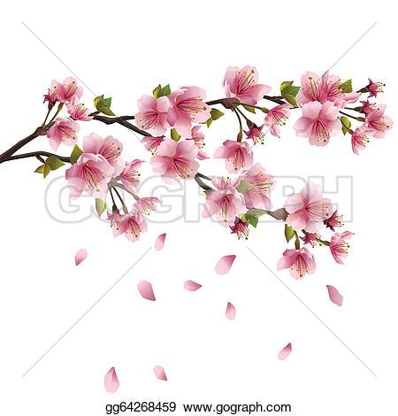 Japanese Flowering Cherry Clip Art.