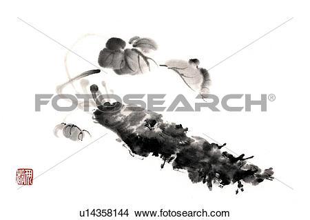 Drawings of Japanese horseradish, ink brush painting, white.
