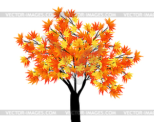 Maple Tree Clipart.
