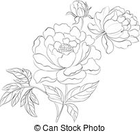 Peony Clipart and Stock Illustrations. 7,413 Peony vector EPS.