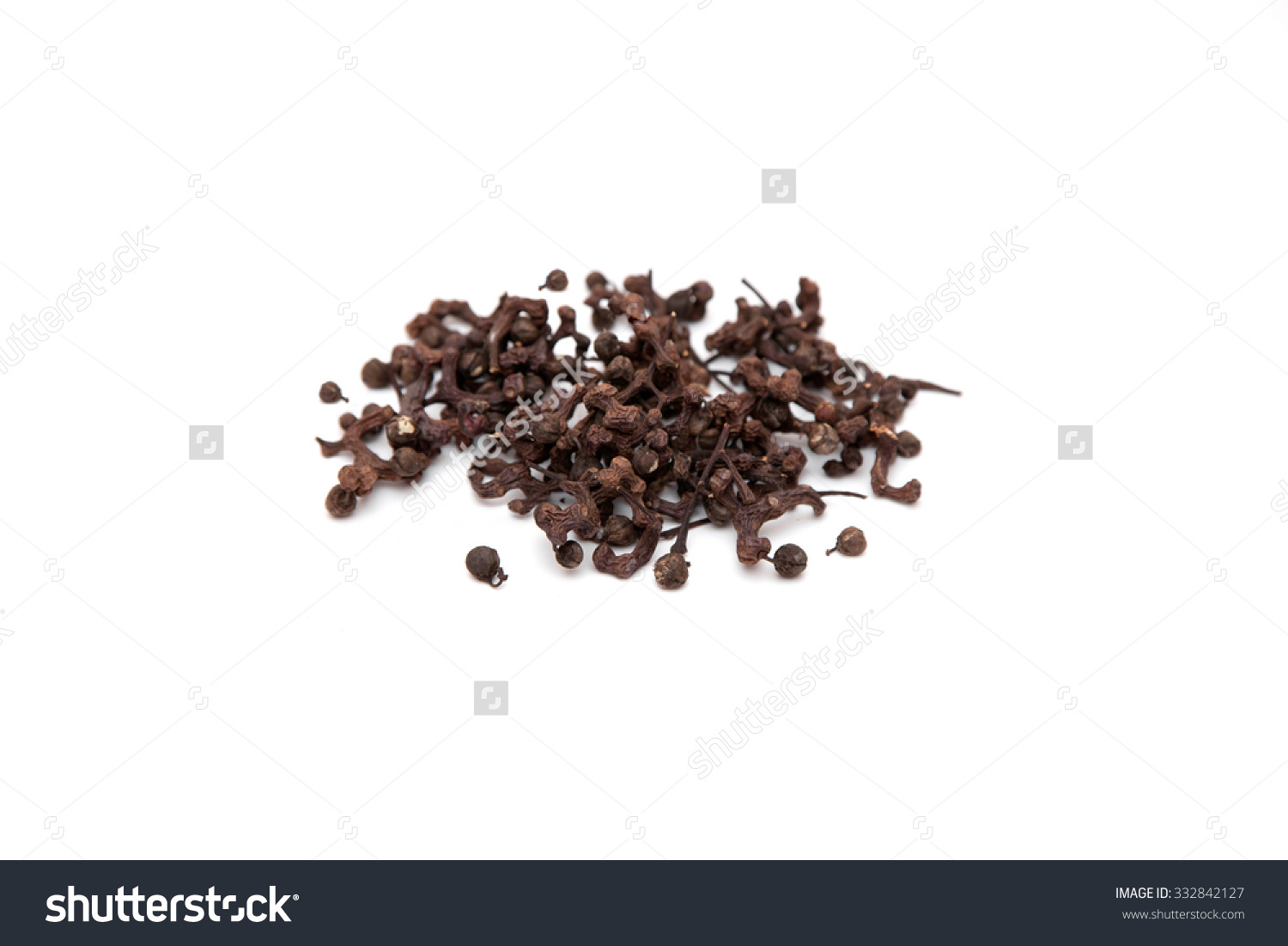 Fruit Of Oriental Raisin Tree. (Hovenia Dulcis Thunb) Stock Photo.