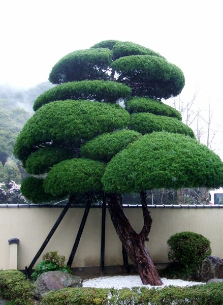 Beppu Japan.