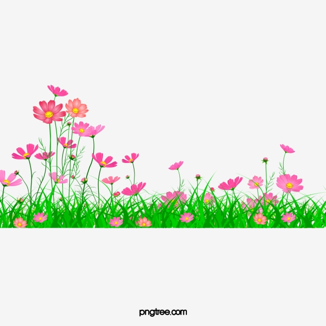 Aster Beautiful Garden, Garden Clipart, Pretty, Aster PNG.