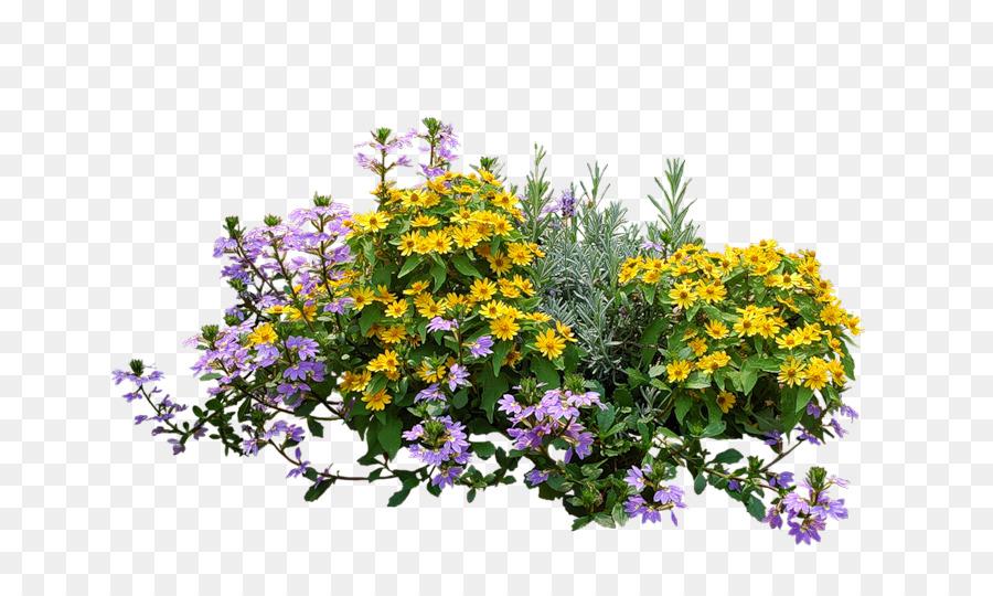 Arbusto, Jardín De Flores, Flor imagen png.