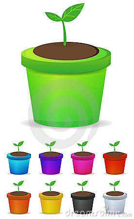 Jardiniere Stock Illustrations.