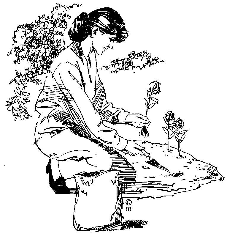 jardiniere.jpg.