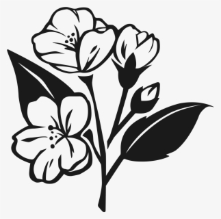 Free Jasmine Black And White Clip Art with No Background.