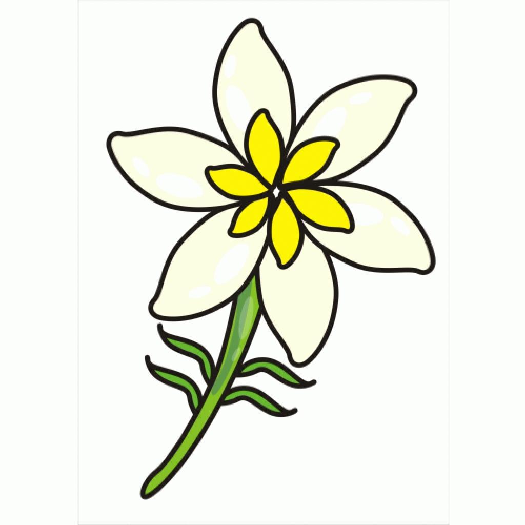 clipart jasmine flower clipart best.