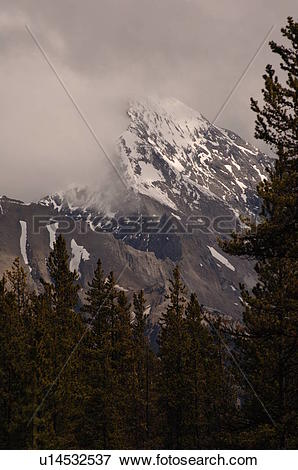 Picture of Low Cloud over snow capped mountain, Jasper National.
