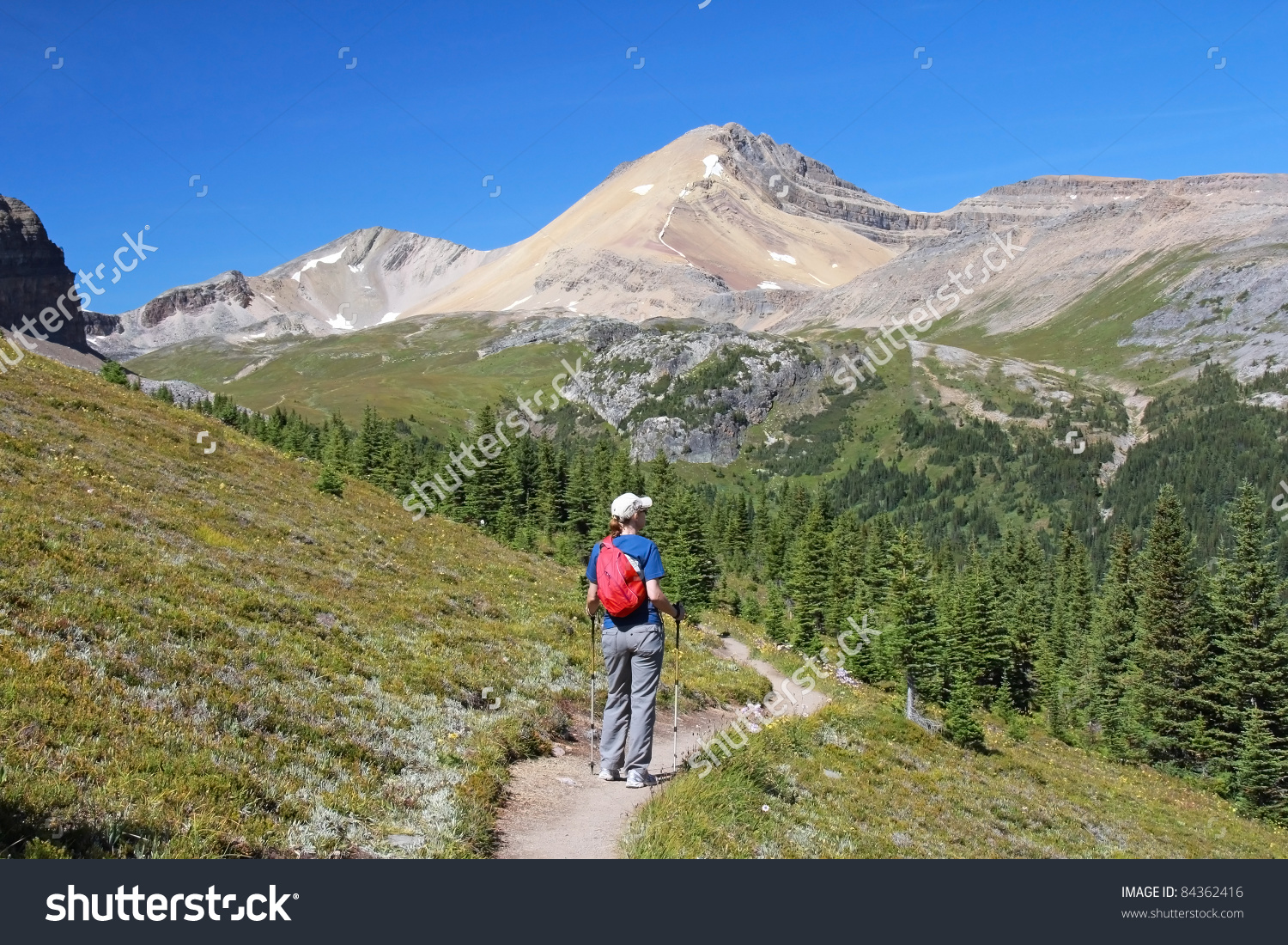Woman Hiking Through Alpine Meadow Rocky Stock Photo 84362416.