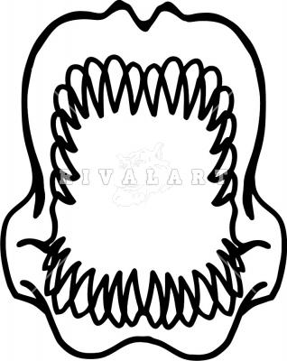 Shark Jaw Clip Art.