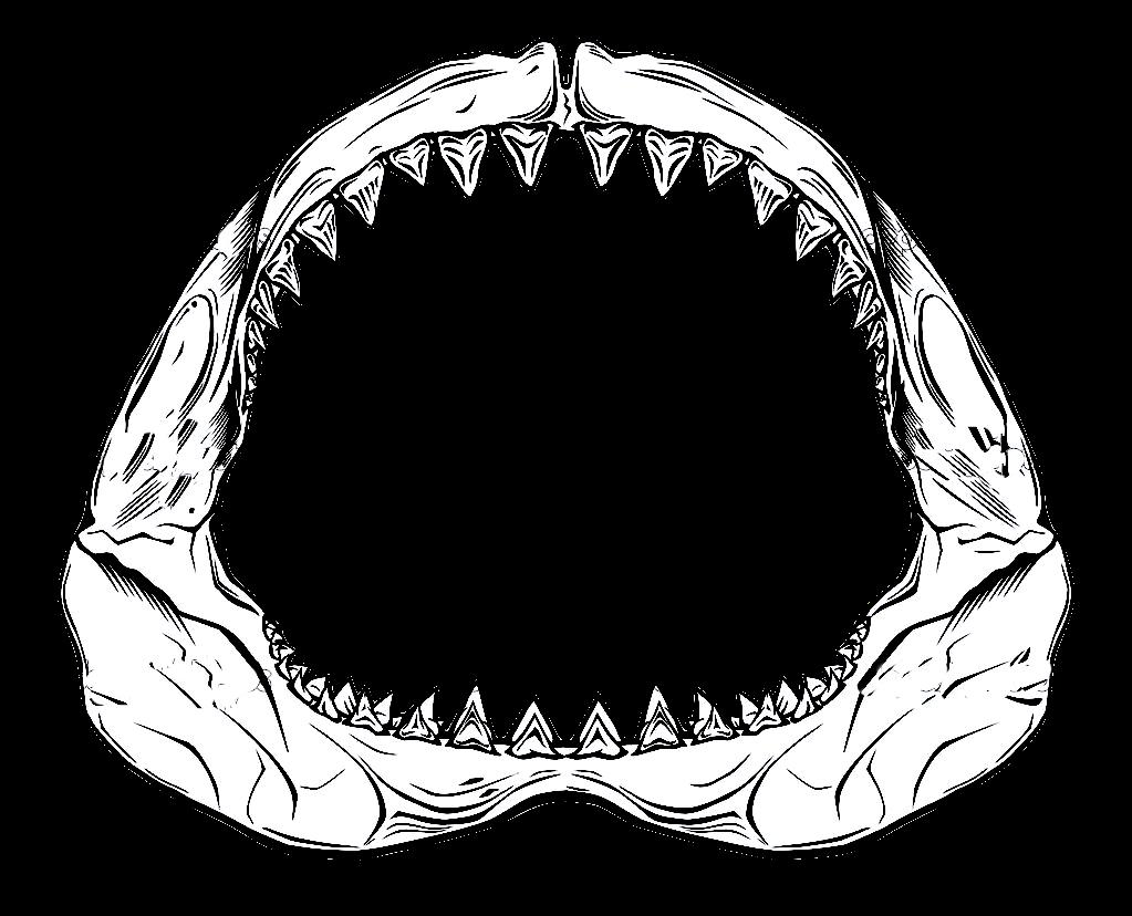 Shark Jaws PNG Transparent Shark Jaws.PNG Images..