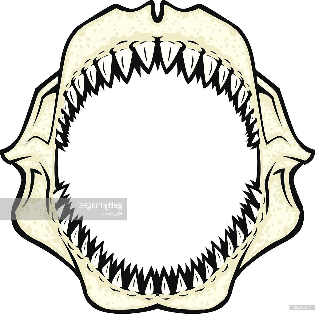 Best Shark Jaws Clip Art Design » Free Vector Art, Images, Graphics.