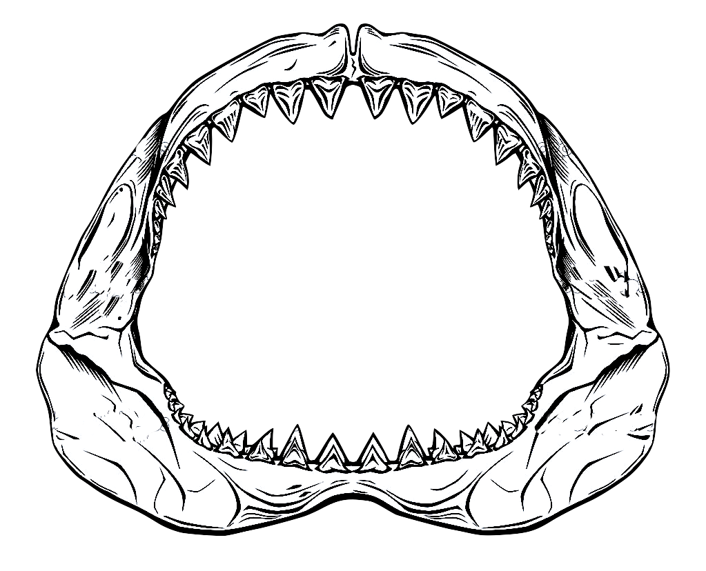 Life clipart jaws, Life jaws Transparent FREE for download.