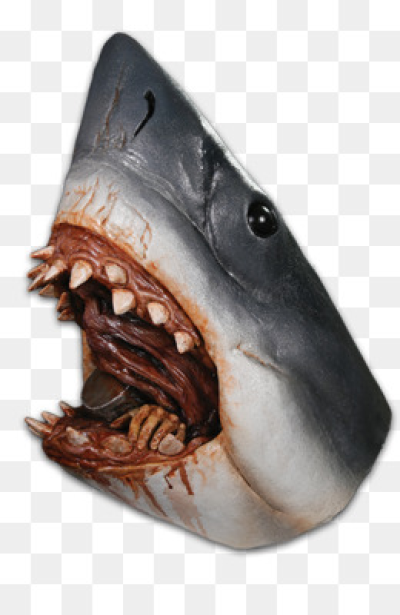 Jaws PNG.