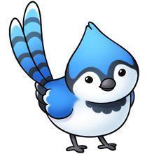 Blue Jay Bird Clipart.